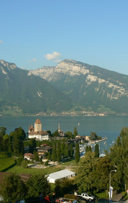 Sale of Residential Property in Switzerland
